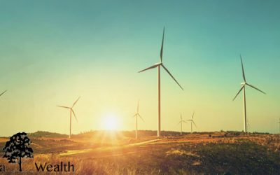 Sustainable Investing –  Considerations for Building an ESG Portfolio